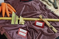 Instrumentos4